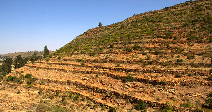 Hills in Northern Tigray, Ethiopia, are terraced with a series of small dams to improve natural irrigation and raise the water table.