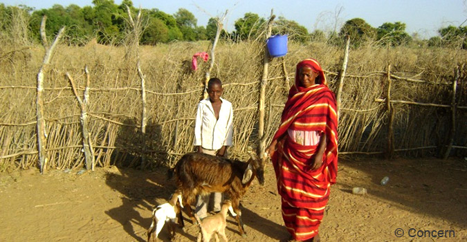 Muna Abu Jabar (43) with her son and their goats in Muglad, South Kordofan, Sudan.  Photo: Concern / Alaa Hamid al Bashir, 2012.
