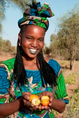 A woman in Widou Thingily, Northern Senegal shows her crop of Tomatoes. Photo: WFP/Jenny Matthews