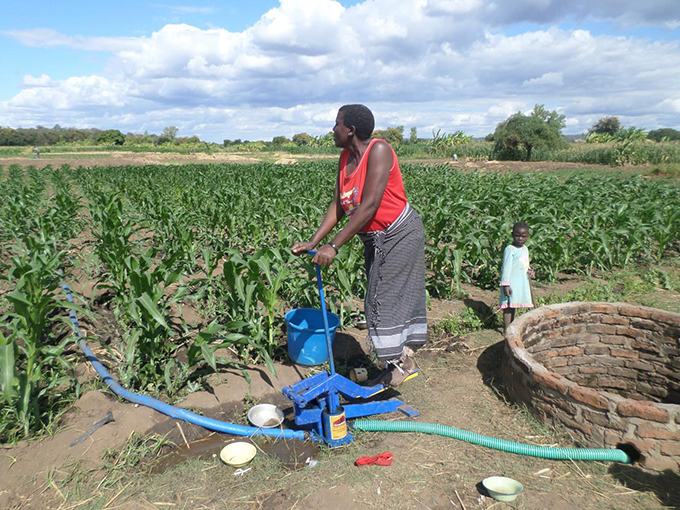 With support from Irish Aid in Malawi, Magret Andiseni took part in a small-scale irrigation scheme, which has provided a constant source of water for her crops, and has been key to improving agricultural productivity, food security and incomes for her household. Photo: Kumbukani Mhango