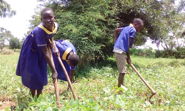 Prisca Lochoro, gardening as part of Girls Education School Club, Morulinga Primary School, Karamoja, Uganda