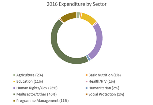 2016 Expenditure by Sector